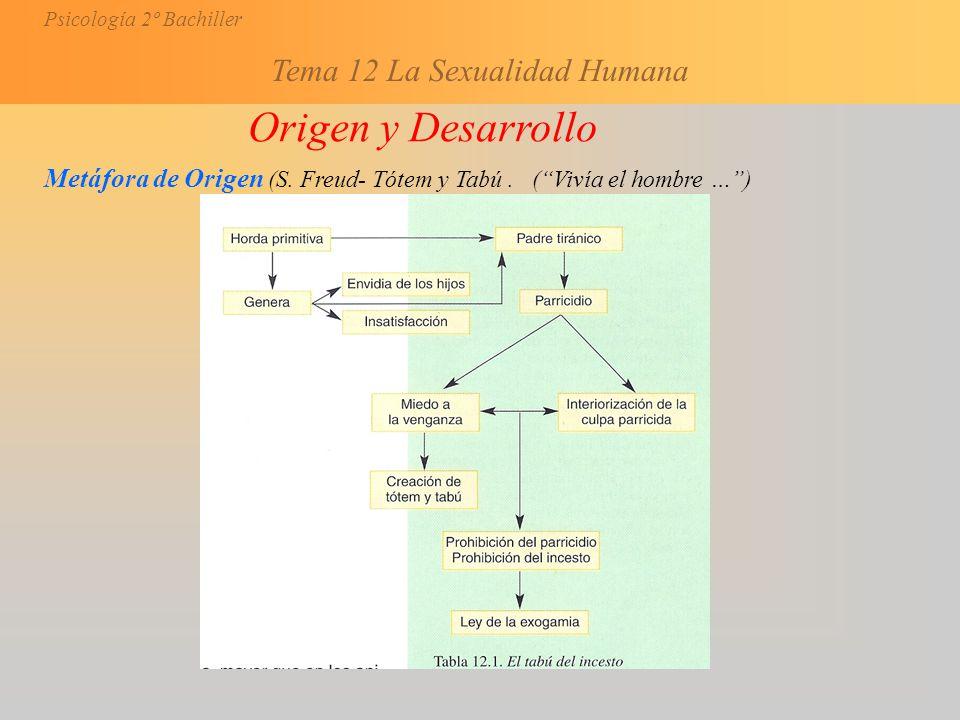 Origen y Desarrollo Metáfora de Origen (S. Freud- Tótem y Tabú . ( Vivía el hombre … )