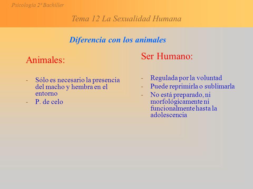 Ser Humano: Animales: Diferencia con los animales