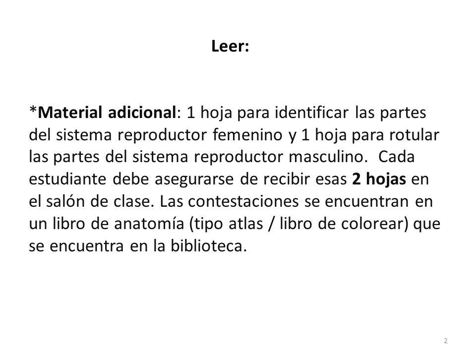 Leer: