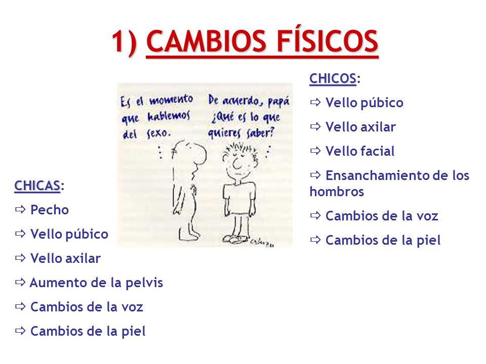 1) CAMBIOS FÍSICOS CHICOS:  Vello púbico  Vello axilar