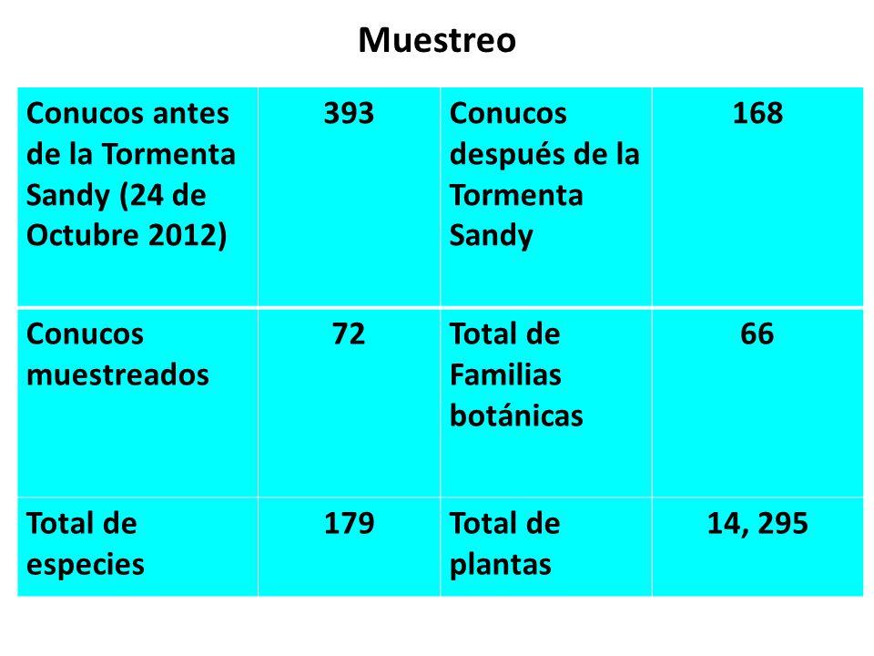 Muestreo Conucos antes de la Tormenta Sandy (24 de Octubre 2012) 393