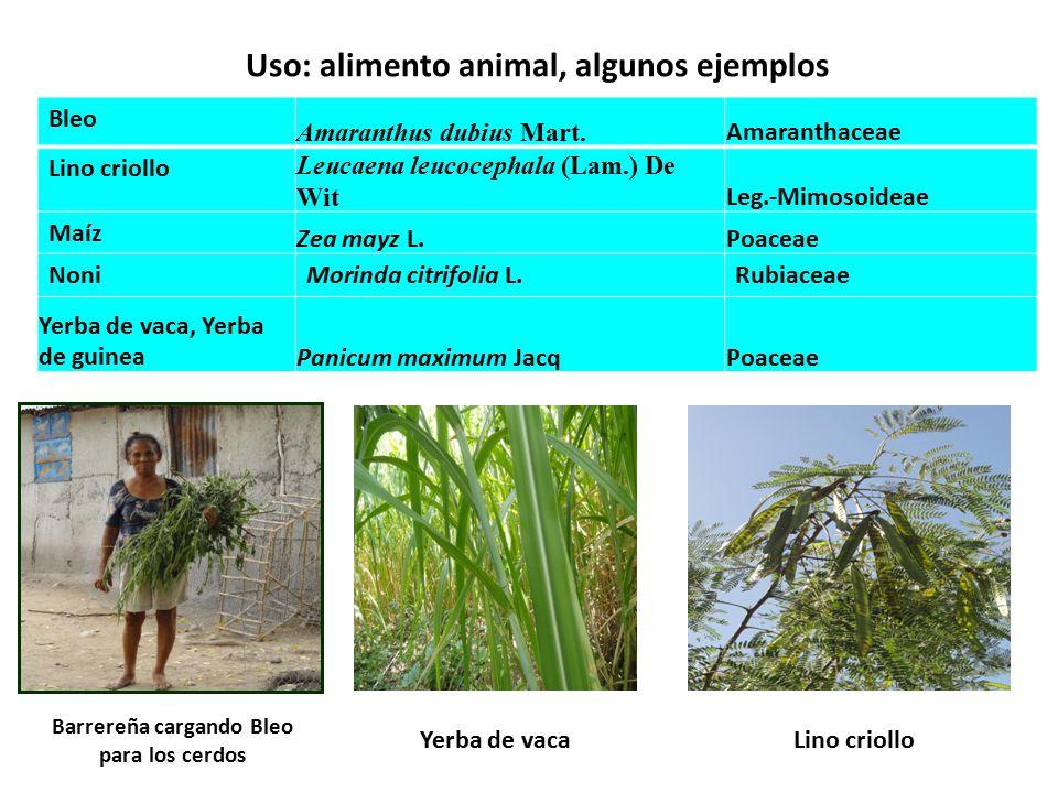 Uso: alimento animal, algunos ejemplos