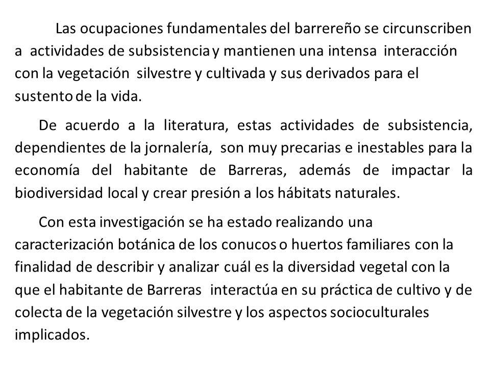 Las ocupaciones fundamentales del barrereño se circunscriben a actividades de subsistencia y mantienen una intensa interacción con la vegetación silvestre y cultivada y sus derivados para el sustento de la vida.