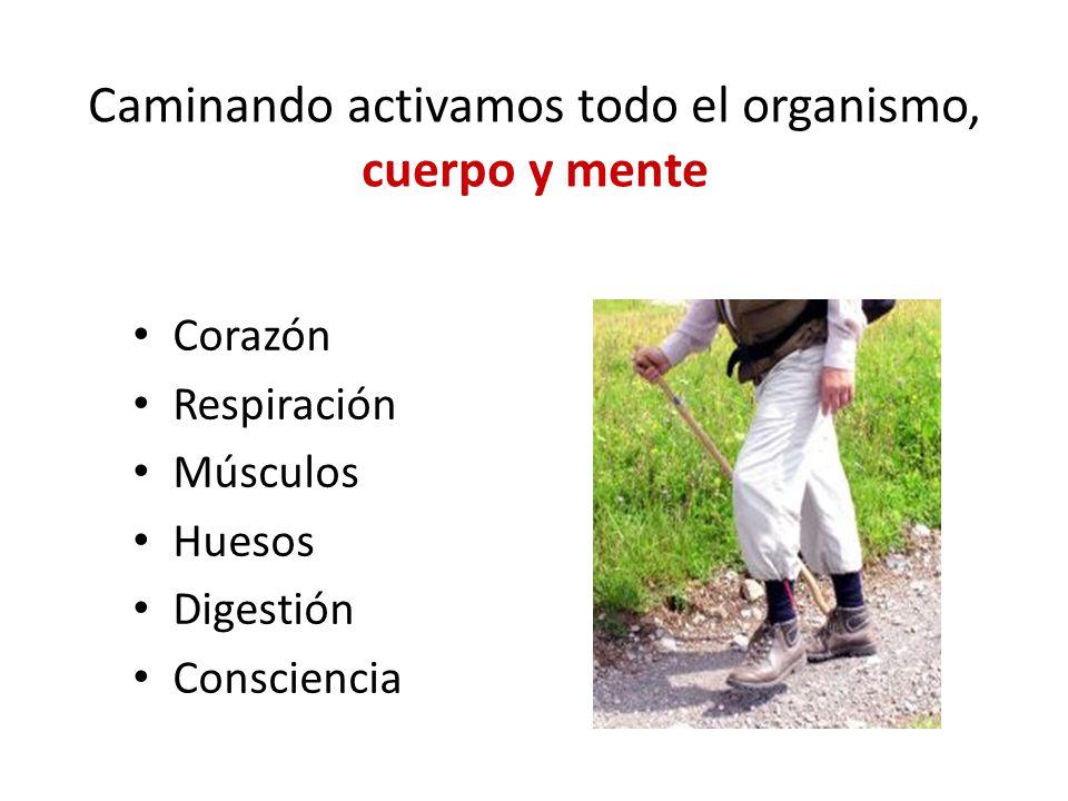 Caminando activamos todo el organismo, cuerpo y mente