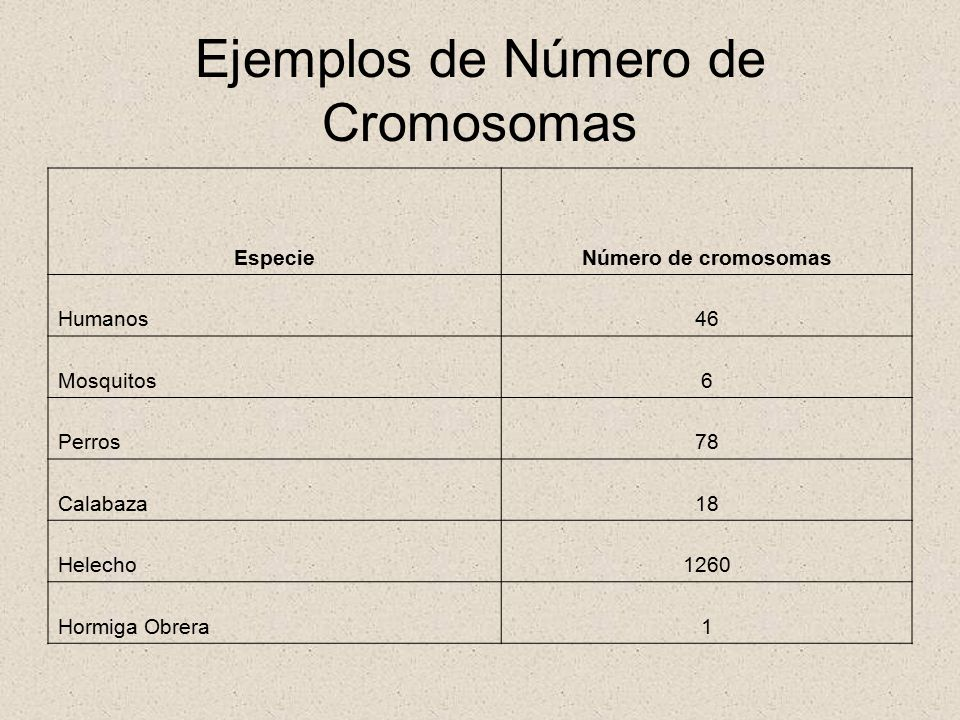 Ejemplos de Número de Cromosomas