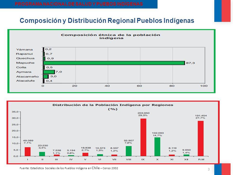 PROGRAMA NACIONAL DE SALUD Y PUEBOS INDÍGENAS
