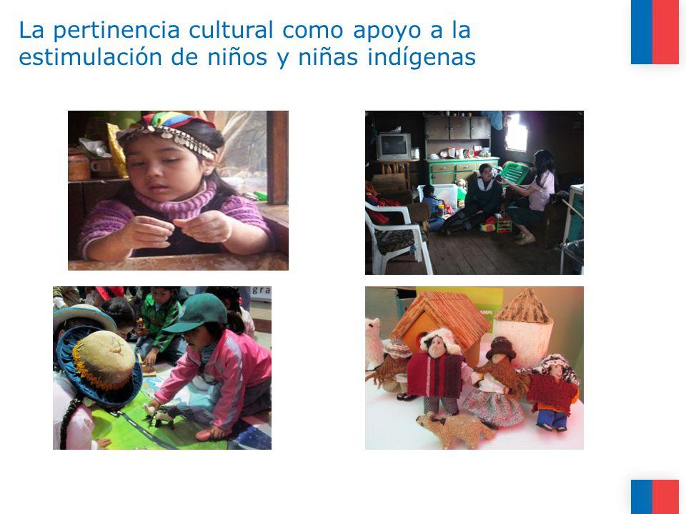 La pertinencia cultural como apoyo a la estimulación de niños y niñas indígenas