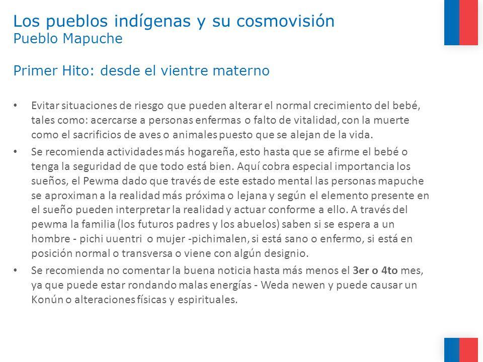 Los pueblos indígenas y su cosmovisión Pueblo Mapuche