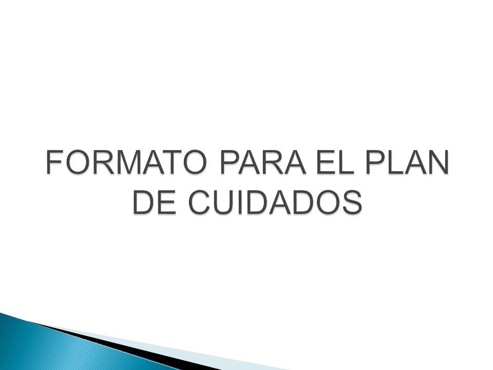 FORMATO PARA EL PLAN DE CUIDADOS