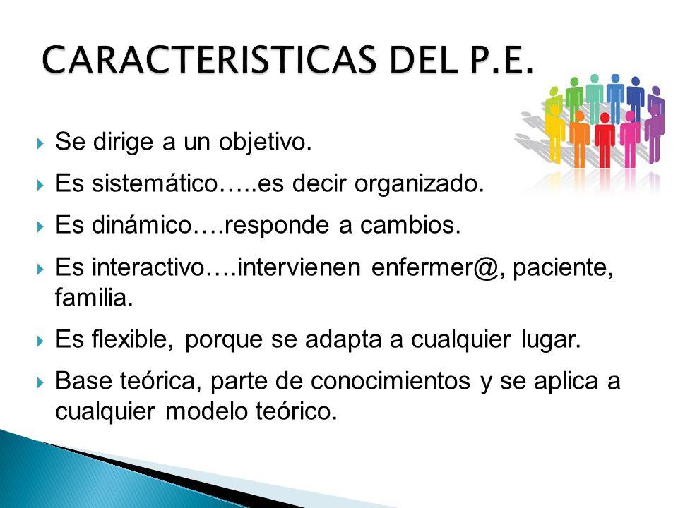 CARACTERISTICAS DEL P.E.