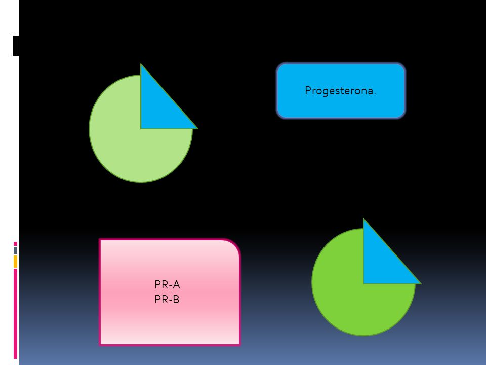 Progesterona. Estradiol. ERα ERβ PR-A PR-B