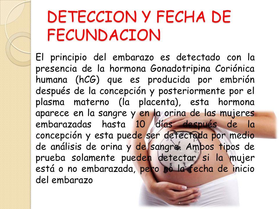 DETECCION Y FECHA DE FECUNDACION