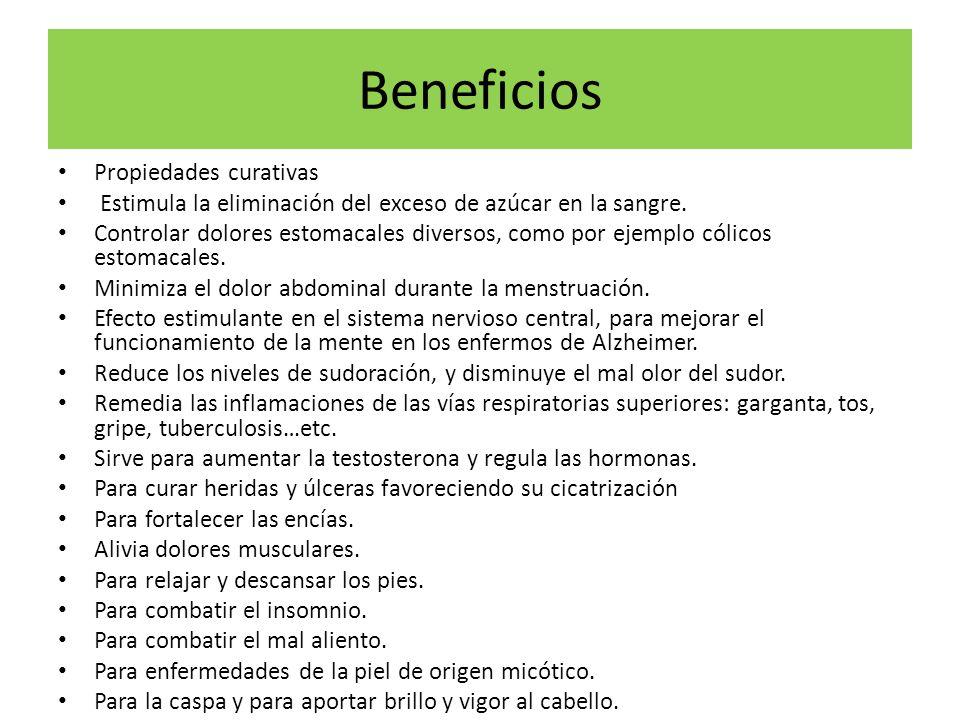 Beneficios Propiedades curativas