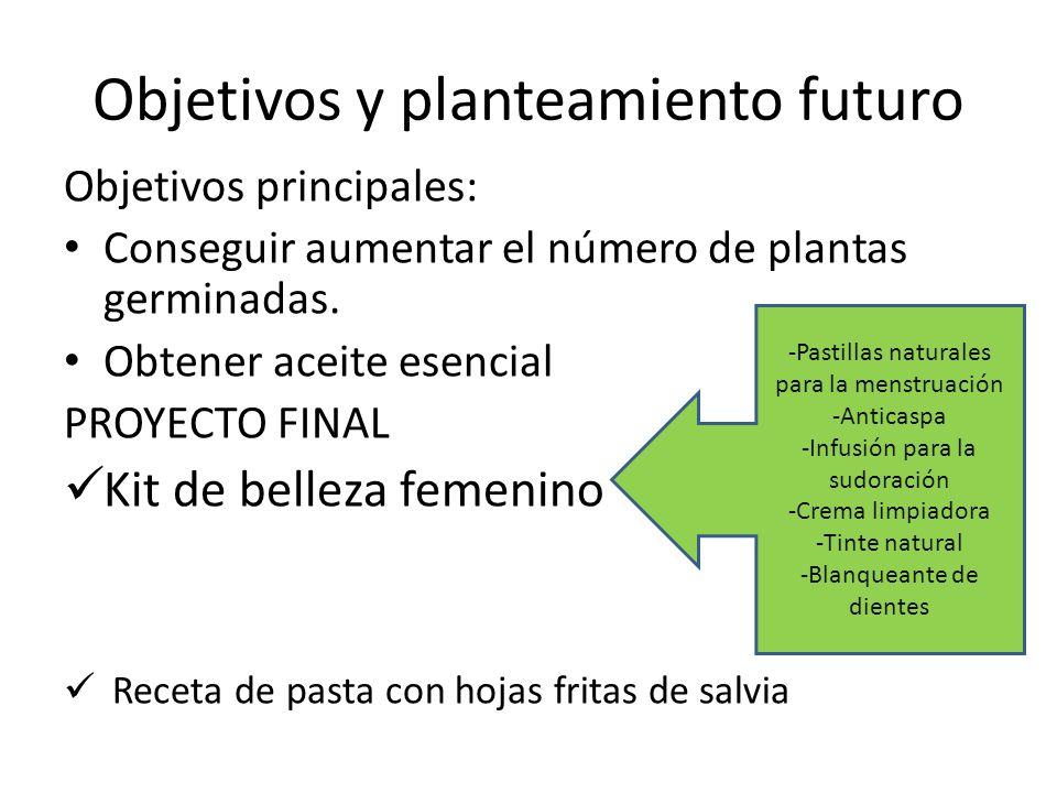 Objetivos y planteamiento futuro