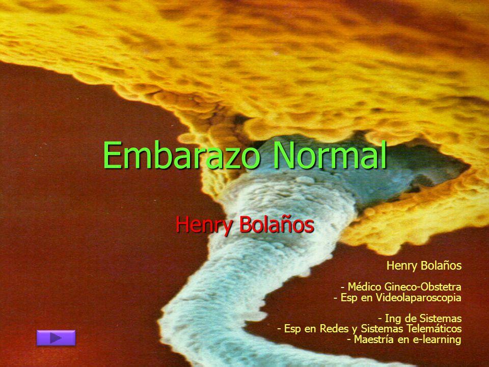 Embarazo Normal Henry Bolaños Henry Bolaños Médico Gineco-Obstetra