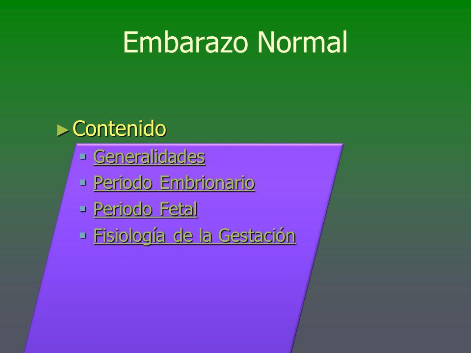 Embarazo Normal Contenido Generalidades Periodo Embrionario