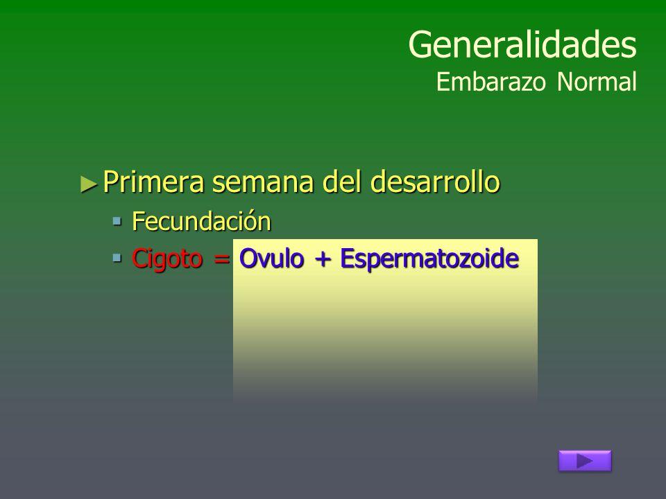 Generalidades Embarazo Normal