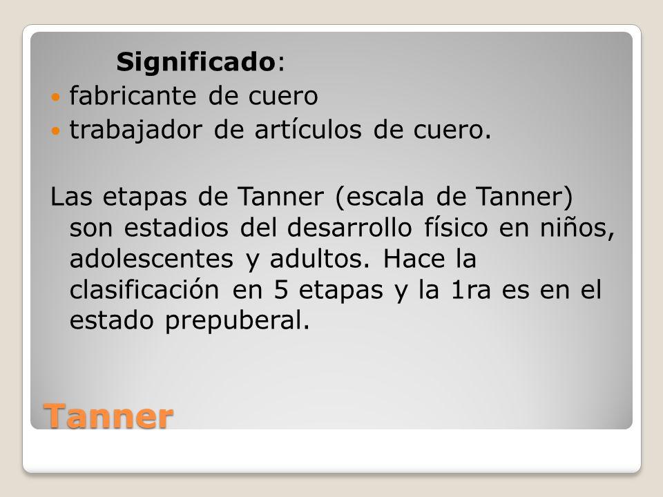 Tanner Significado: fabricante de cuero