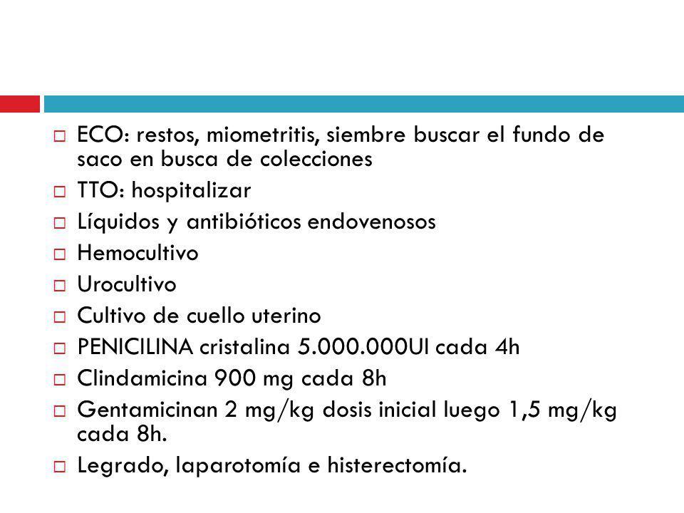 ECO: restos, miometritis, siembre buscar el fundo de saco en busca de colecciones