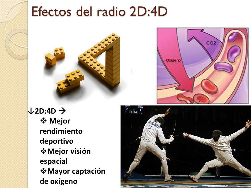 Efectos del radio 2D:4D ↓2D:4D  Mejor rendimiento deportivo