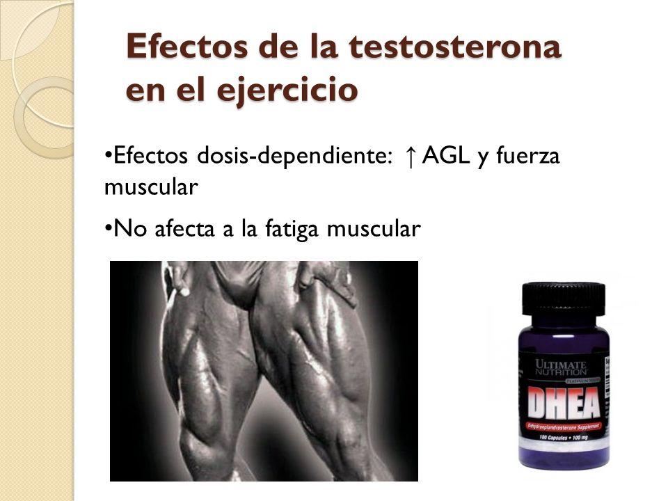 Efectos de la testosterona en el ejercicio