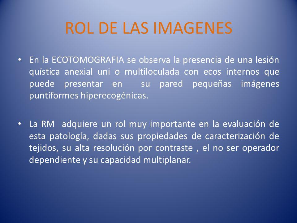 ROL DE LAS IMAGENES