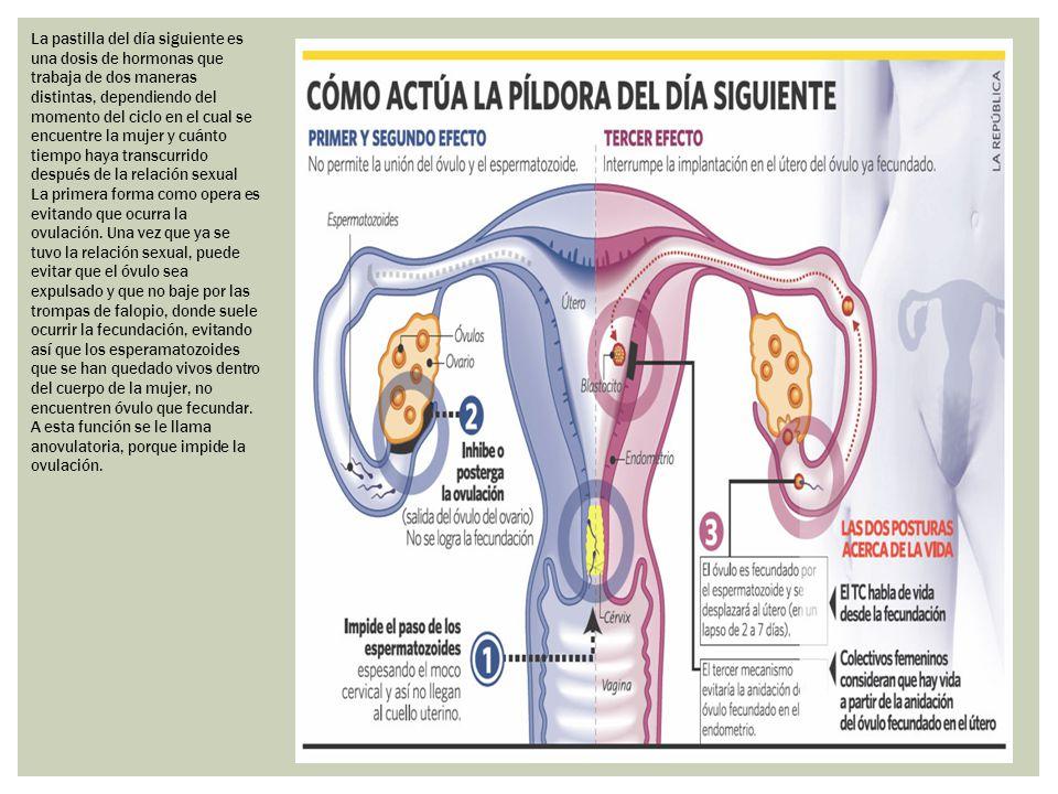 La pastilla del día siguiente es una dosis de hormonas que trabaja de dos maneras distintas, dependiendo del momento del ciclo en el cual se encuentre la mujer y cuánto tiempo haya transcurrido después de la relación sexual
