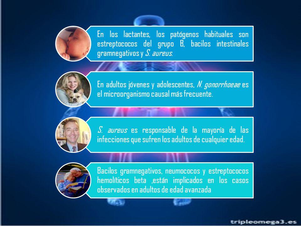 En los lactantes, los patógenos habituales son estreptococos del grupo B, bacilos intestinales gramnegativos y S. aureus.