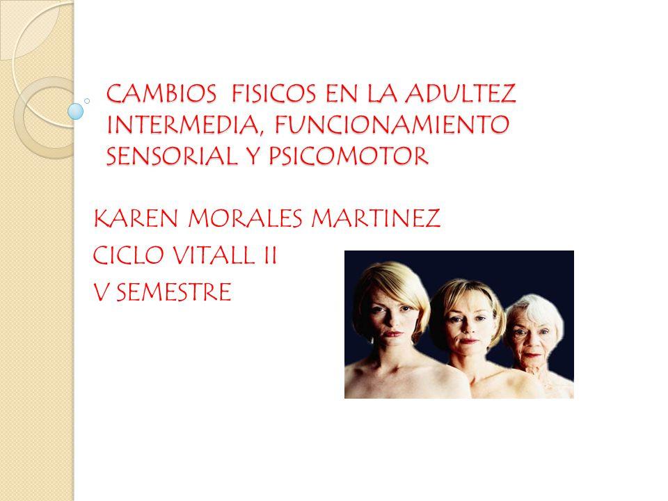 KAREN MORALES MARTINEZ CICLO VITALL II V SEMESTRE