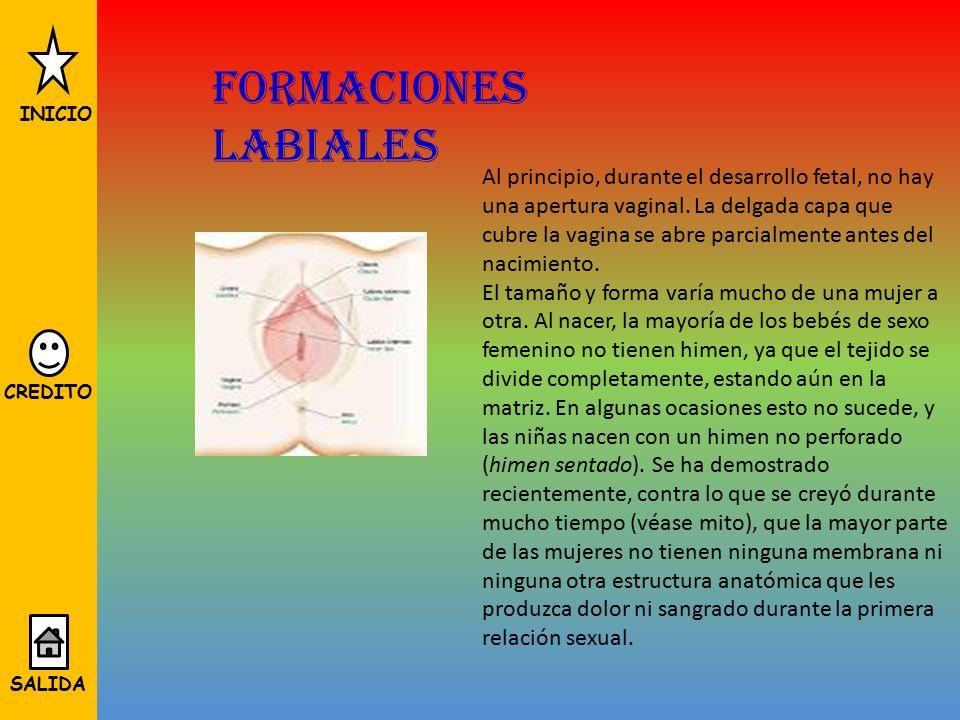 Formaciones labiales INICIO.