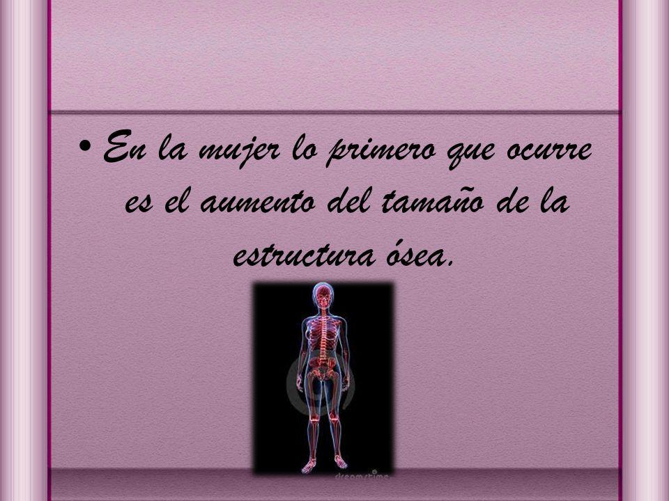 En la mujer lo primero que ocurre es el aumento del tamaño de la estructura ósea.