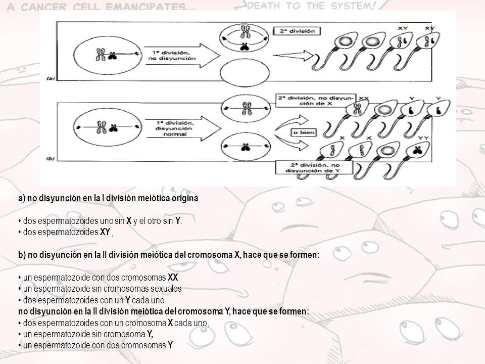 a) no disyunción en la I división meiótica origina