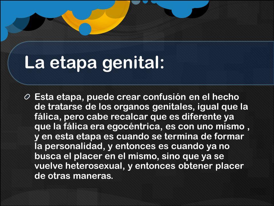La etapa genital: