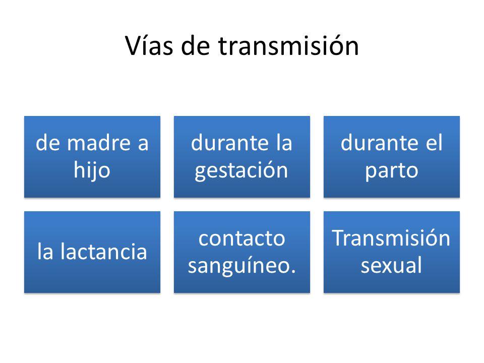 Vías de transmisión de madre a hijo durante la gestación