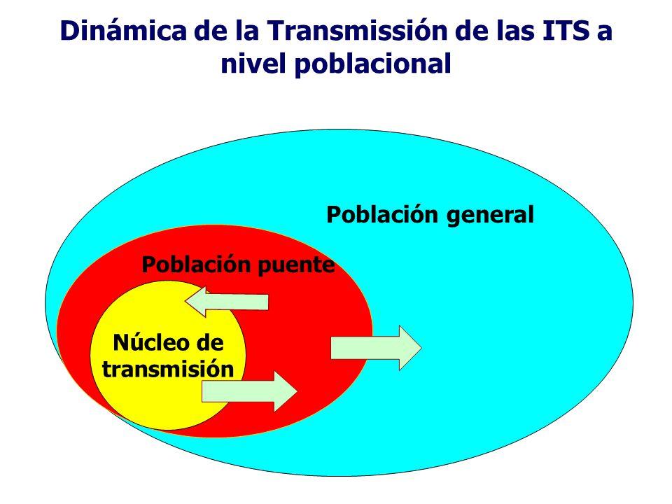 Dinámica de la Transmissión de las ITS a nivel poblacional