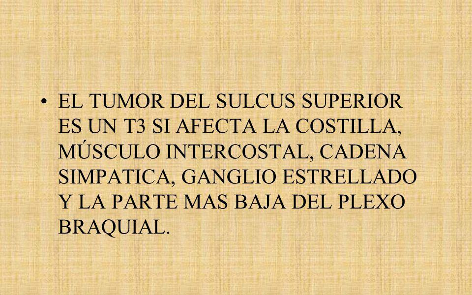 EL TUMOR DEL SULCUS SUPERIOR ES UN T3 SI AFECTA LA COSTILLA, MÚSCULO INTERCOSTAL, CADENA SIMPATICA, GANGLIO ESTRELLADO Y LA PARTE MAS BAJA DEL PLEXO BRAQUIAL.