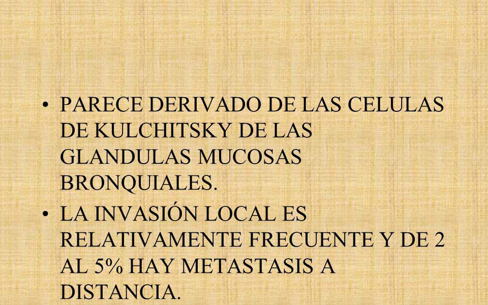 PARECE DERIVADO DE LAS CELULAS DE KULCHITSKY DE LAS GLANDULAS MUCOSAS BRONQUIALES.