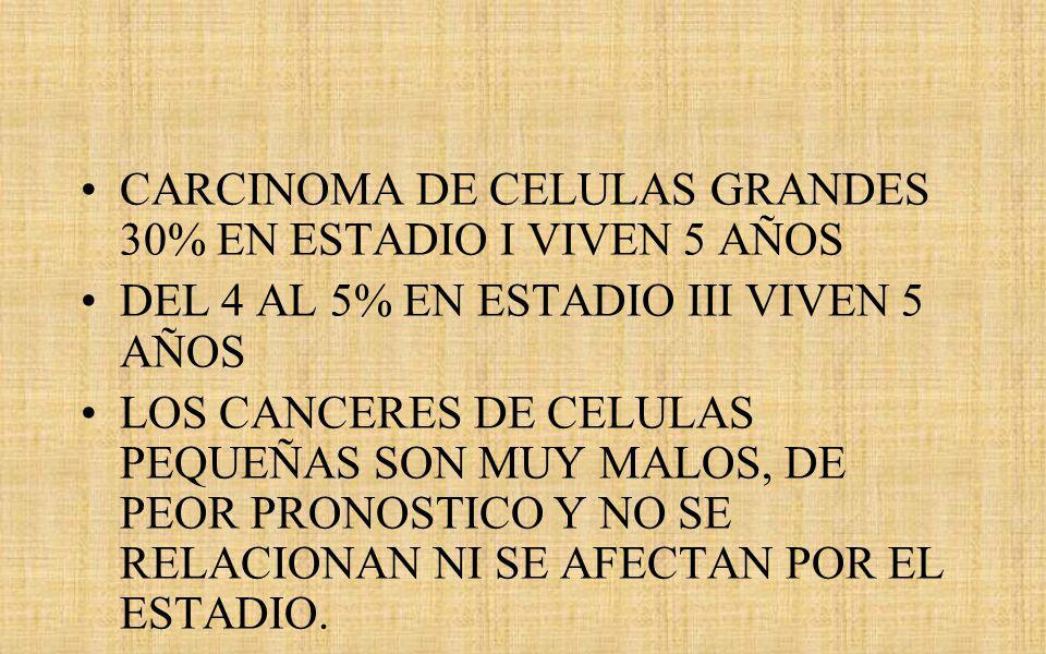 CARCINOMA DE CELULAS GRANDES 30% EN ESTADIO I VIVEN 5 AÑOS