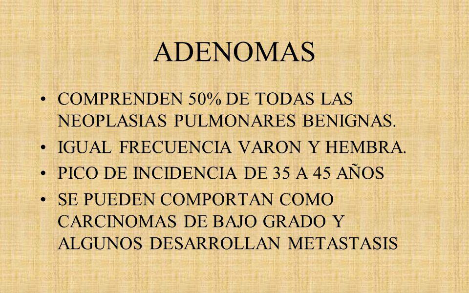 ADENOMAS COMPRENDEN 50% DE TODAS LAS NEOPLASIAS PULMONARES BENIGNAS.