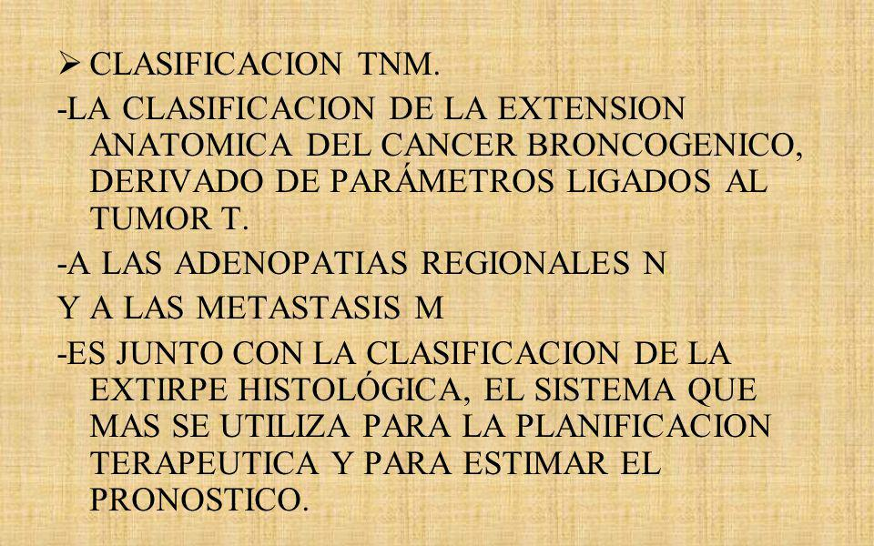 CLASIFICACION TNM. -LA CLASIFICACION DE LA EXTENSION ANATOMICA DEL CANCER BRONCOGENICO, DERIVADO DE PARÁMETROS LIGADOS AL TUMOR T.