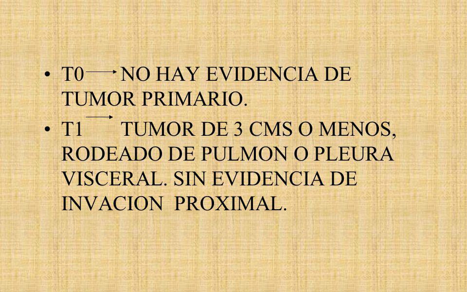 T0 NO HAY EVIDENCIA DE TUMOR PRIMARIO.