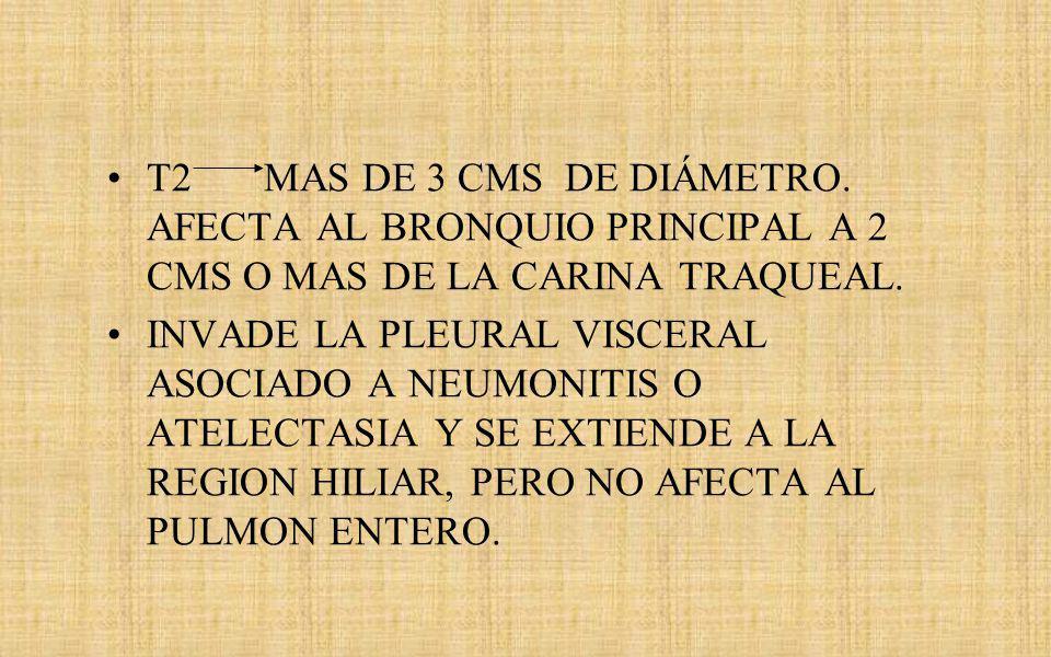 T2 MAS DE 3 CMS DE DIÁMETRO. AFECTA AL BRONQUIO PRINCIPAL A 2 CMS O MAS DE LA CARINA TRAQUEAL.