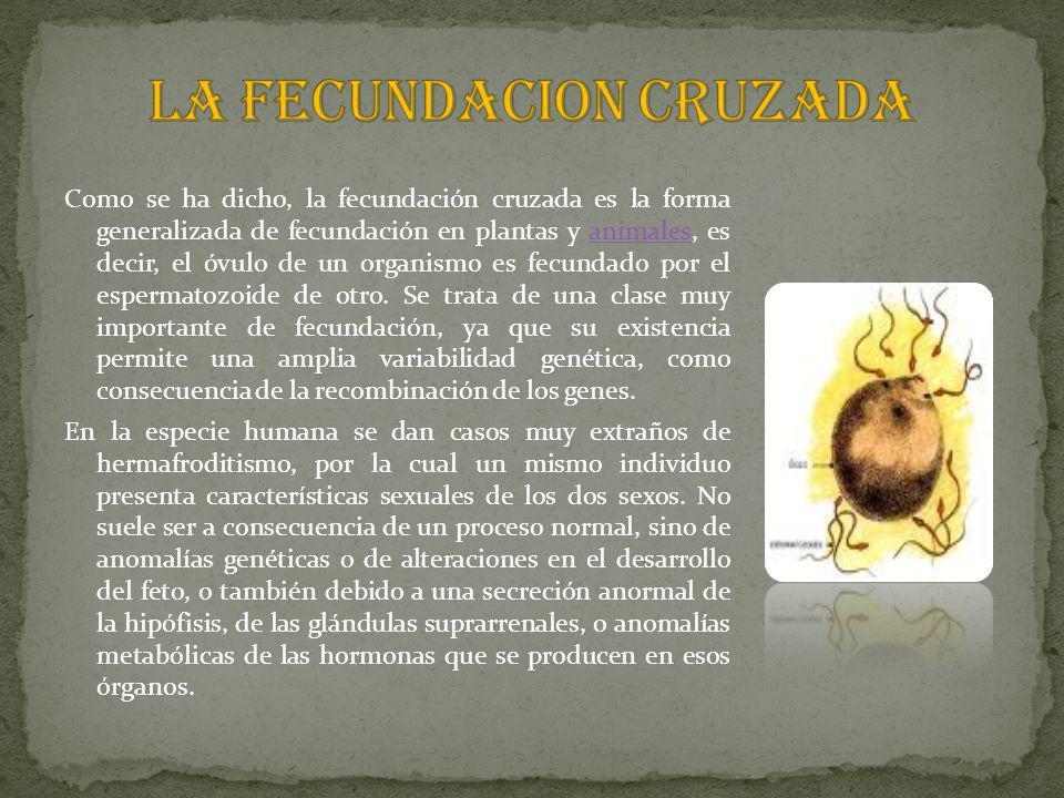 LA FECUNDACION CRUZADA