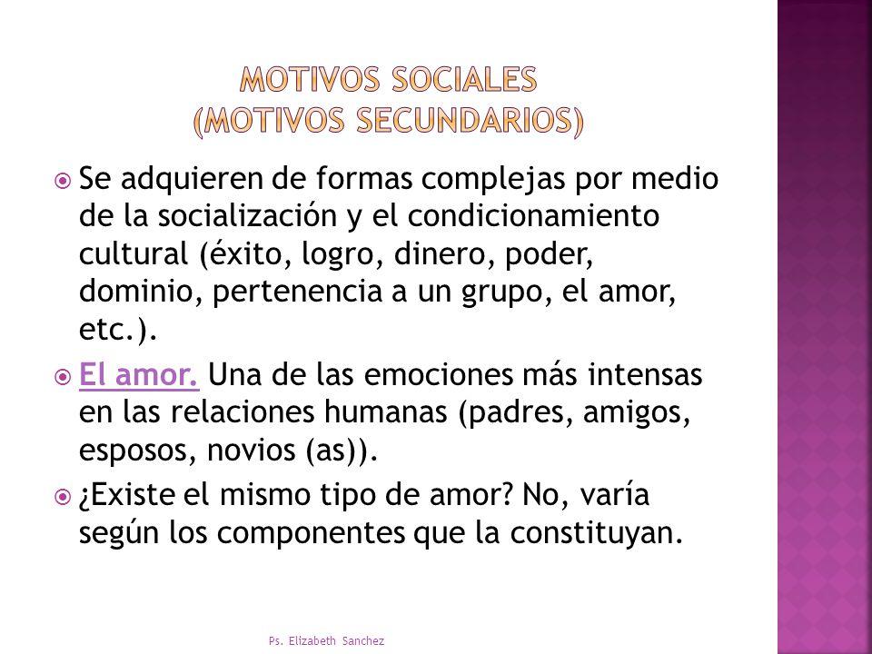 Motivos sociales (motivos secundarios)