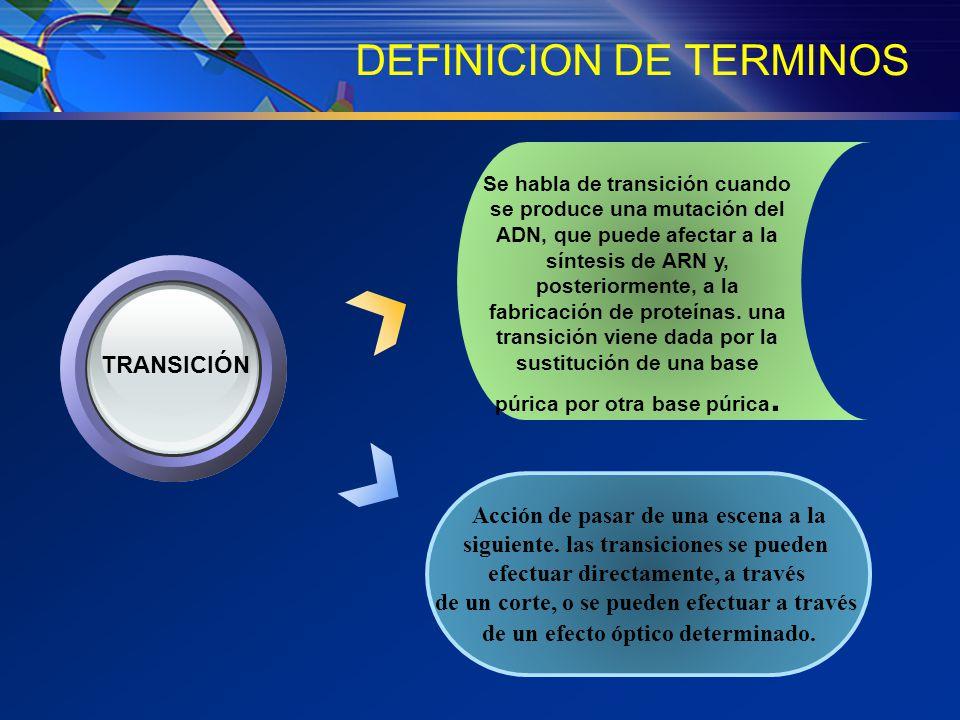 DEFINICION DE TERMINOS