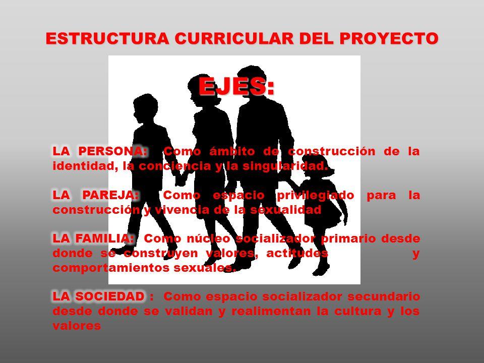 ESTRUCTURA CURRICULAR DEL PROYECTO