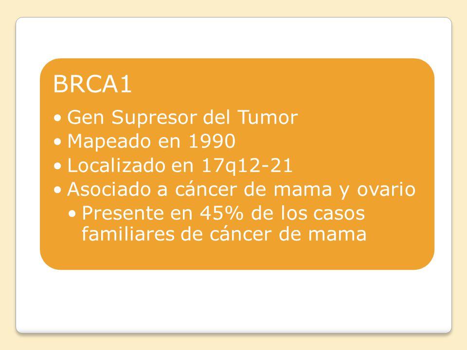 BRCA1 Gen Supresor del Tumor Mapeado en 1990 Localizado en 17q12-21