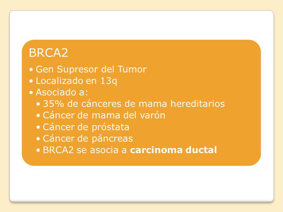 BRCA2 Gen Supresor del Tumor Localizado en 13q Asociado a: