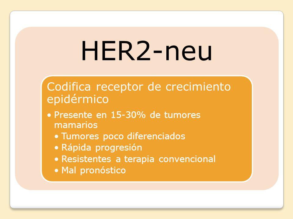 HER2-neu Codifica receptor de crecimiento epidérmico