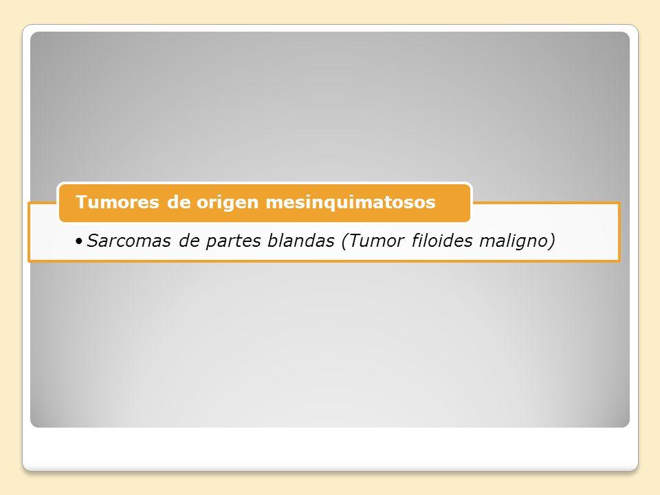 Sarcomas de partes blandas (Tumor filoides maligno)
